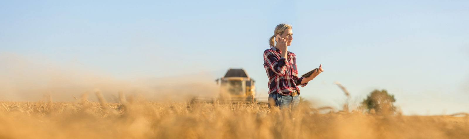 Farmer standing in her field using a tablet.